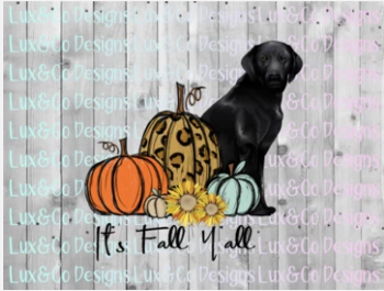 Its Fall Yall Cheetah Sunflower Dog Black Lab Sublimation Transfer