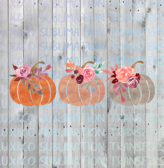 Floral Pumpkin Trio Sublimation Transfer