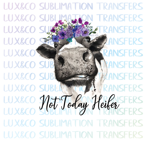 Not Today Heifer Sublimation Transfer Waterslide