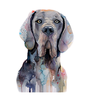 Copy of Crazy Great Dane Lady Sublimation Transfer