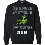Chinese Proverb - Plant Tree Was 20 Years Ago. Best Time Is Now T-Shirt & Hoodie