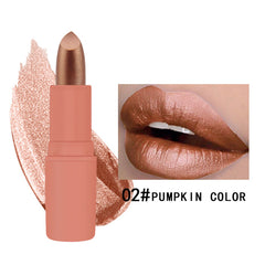 12 Colors Waterproof Long Lasting Metallic Matte Lipstick