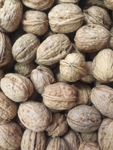 Organic Walnuts in Shell from France - Category I