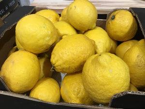 Organic Lemon from Spain