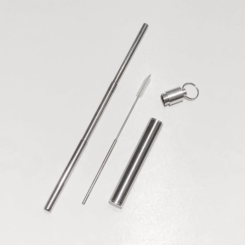 Stainless Steel Retractable Straw and Brush w/Case