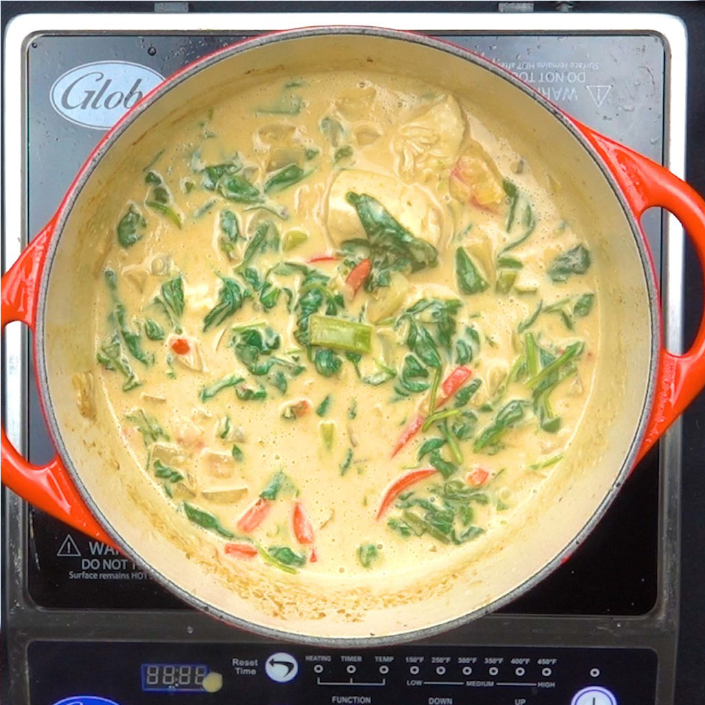 Thai Chicken and Vegetable Peanut Curry VIDEO