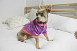 Purple Pop Velvet Dog Top- XXXS, XXS & XS only