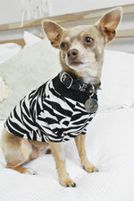 Zebra Print Dog Top- LIMITED EDITION