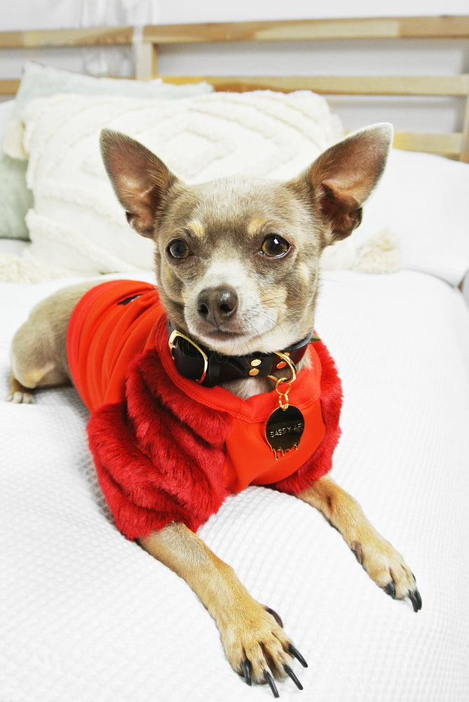 Red On Red Faux Fur Dog Top - XXS + XS only