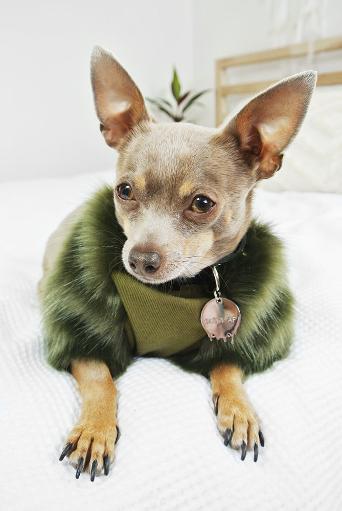 Envy Faux Fur Dog Jumper