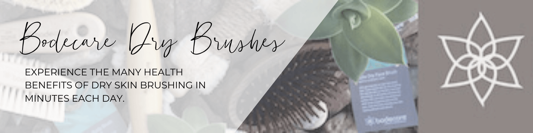 Experience the health benefits of Dry Brushing your body.