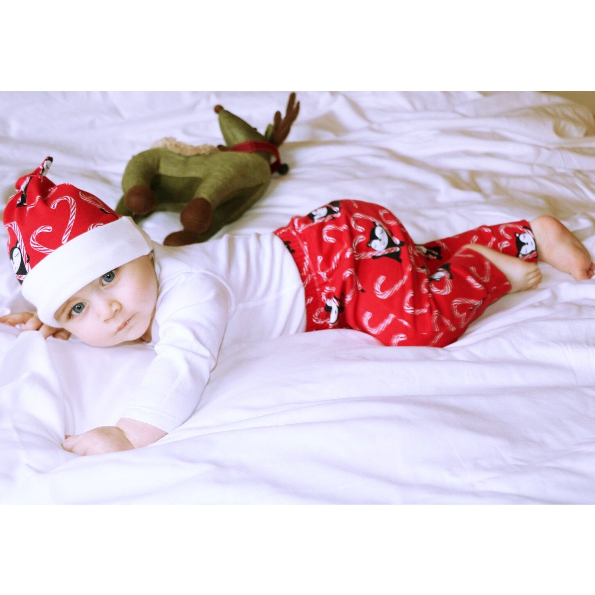 Organic Cotton Myyry's Candy Cane in Red Trousers