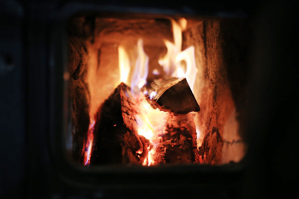 Hibernation and the sacred fire