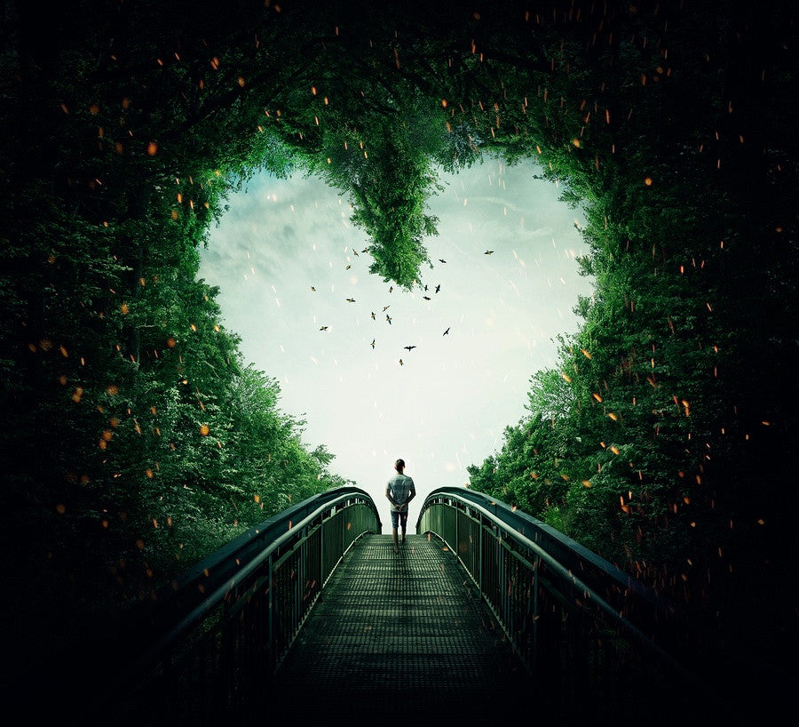 Walk through heart hedge