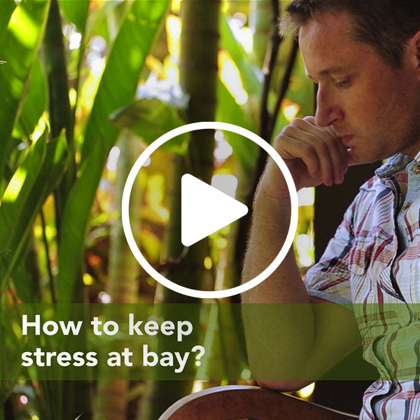 How to keep stress at bay? Philip Stein