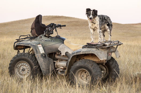 The Best Items to Keep on Your ATV