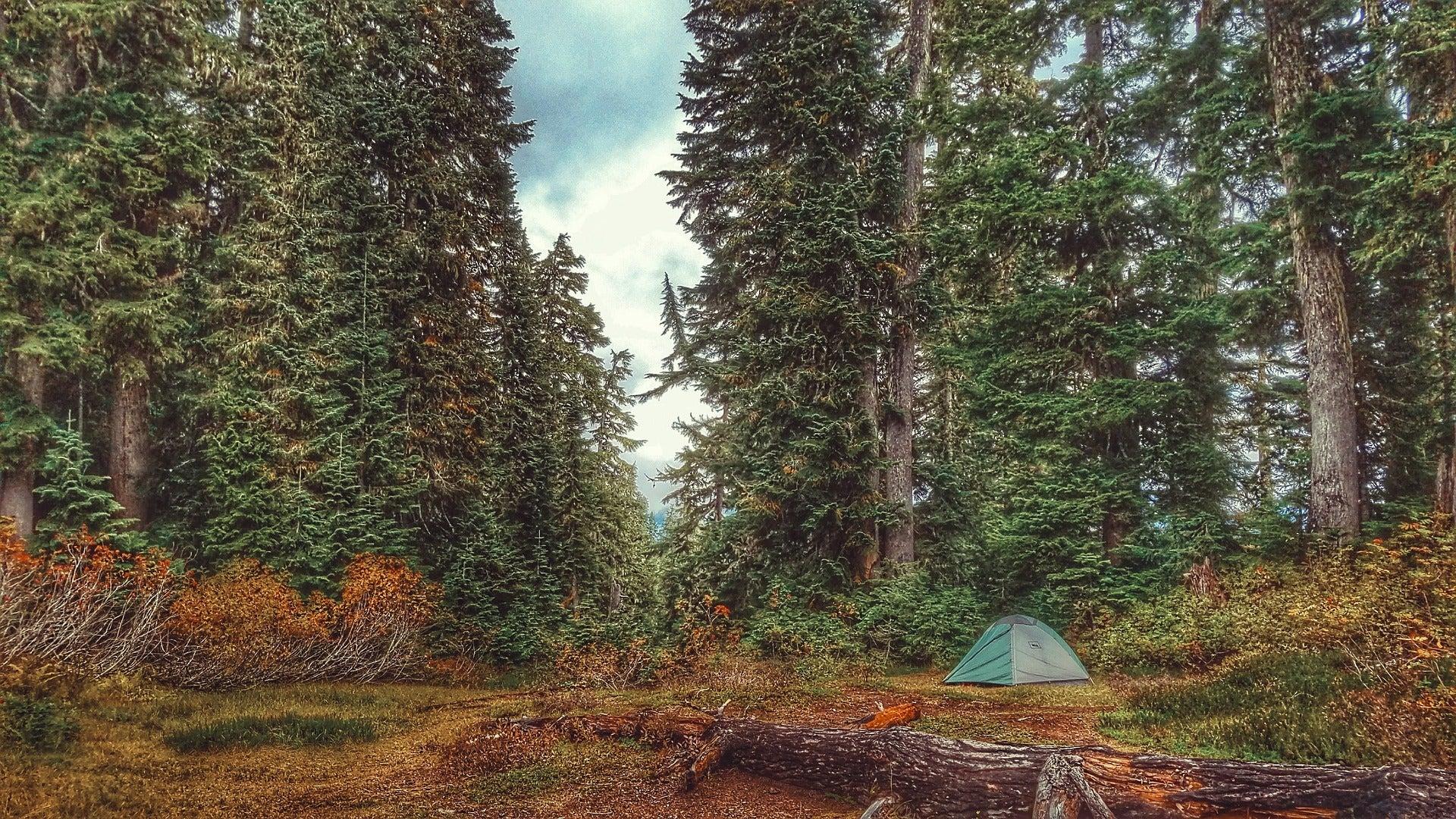 Tips for Camping in Fall Months