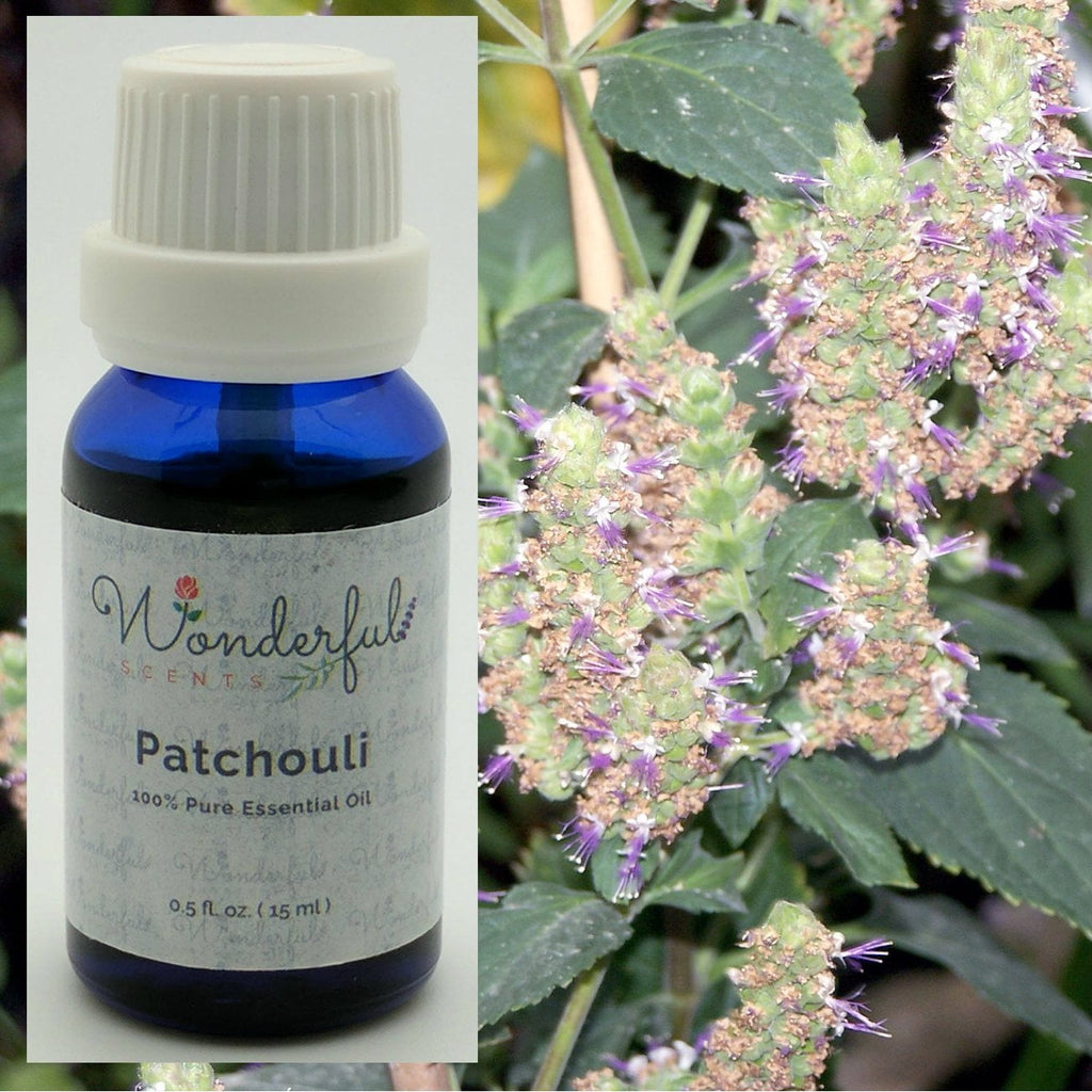 The Wonderful Scents Of Patchouli Essential Oil