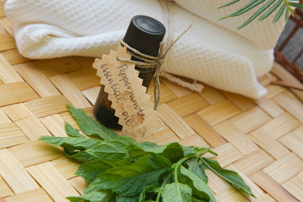 Peppermint Essential Oils for Your Hair