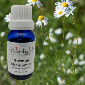 German Chamomile Essential Oil The Oil You Need To Know About