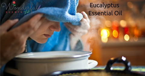 Wonderful Scents Eucalyptus Essential Oil Steam