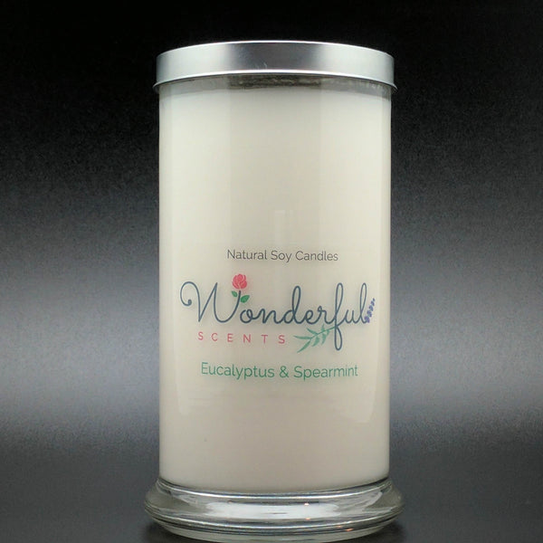 21 oz Eucalyptus and Spearmint Soy Wax Cotton Wick Status Jar Candle