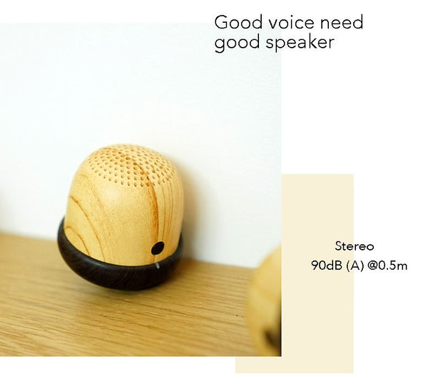 The World's Smallest Bluetooth Speaker With Built in Microphone