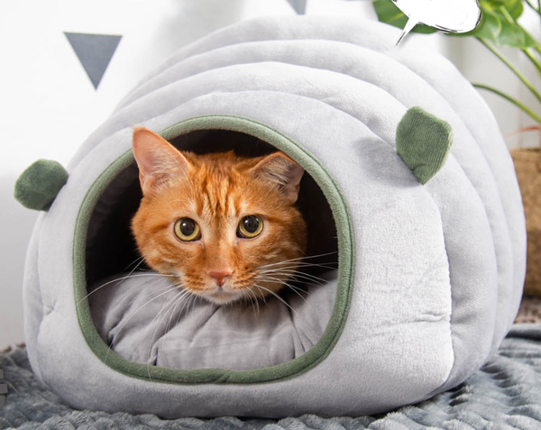 2-in-1 Foldable & Washable Velvet Self-Warming Cave/Nest with Sleeping Bed for Cats and Small Dogs, Suitable for Indoor or Outdoor (Green)