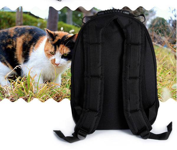 Give Your Baby A Window To The World - Not Your Regular Pet Carrier