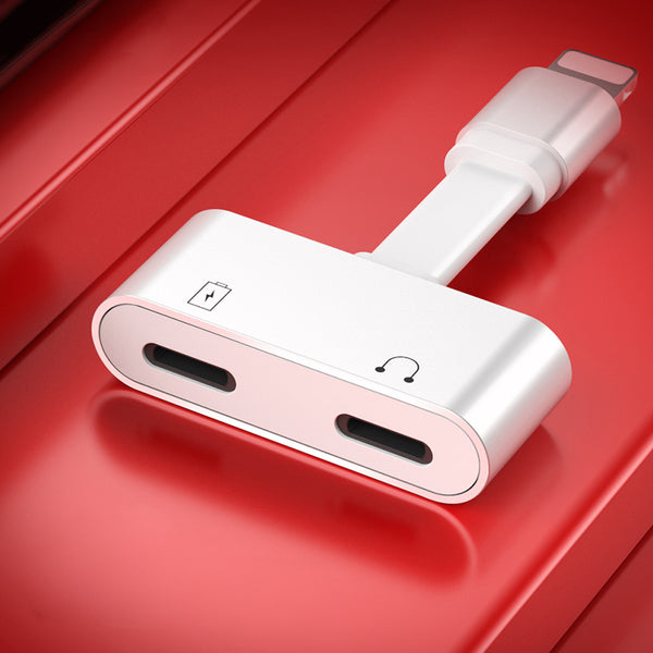 Dual-port Fast-charge Lightning Adapter - Life with One Port Is Not That Easy