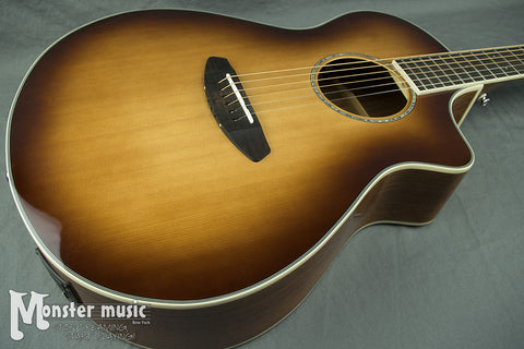 Breedlove Pursuit Concert ABSB Acoustic Guitar