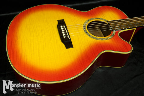 Takamine EG540C NEX Cutaway Acoustic-Electric Guitar Sunburst
