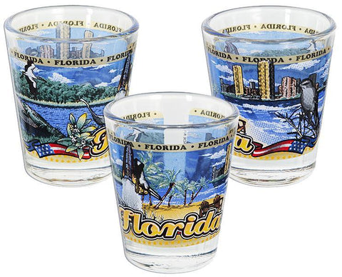 GLFL99 Shot Glass - Panorama Florida