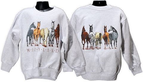 YSMD06A Youth sweatshirt Maryland Horses Ash