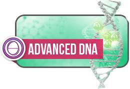 ThetaHealing® Basic DNA & Advanced DNA ~ September 29th - October 4th, 2018