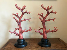 Pair of Red Coral Decorations, Large-Scale