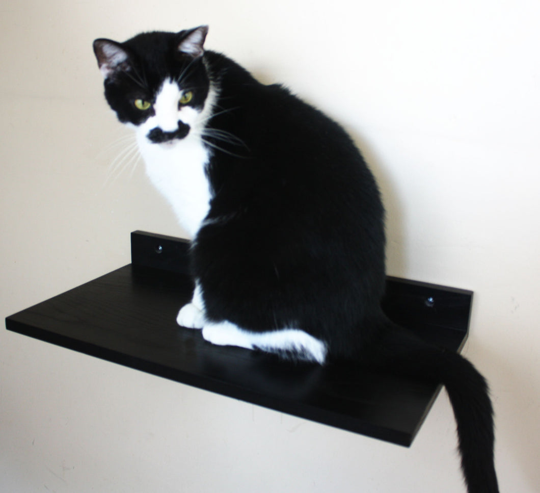 JTWoodworks cat shelf, pet furniture, cat perch, cat toys, many colors available.  Cat perch made of solid wood.