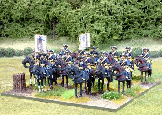 SCR001 Swedish Horse Regiment (3 squadrons) - Warfare Miniatures USA