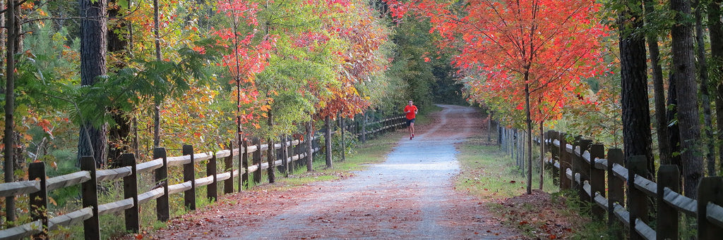 Top 5 Walking Trails in Durham, NC
