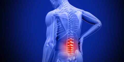 LBP lower back pain