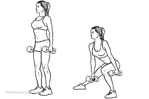 exercises for the gluteal muscles