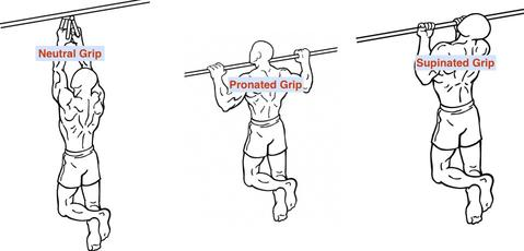 Pull Ups or Chin Ups or Neutral Grip
