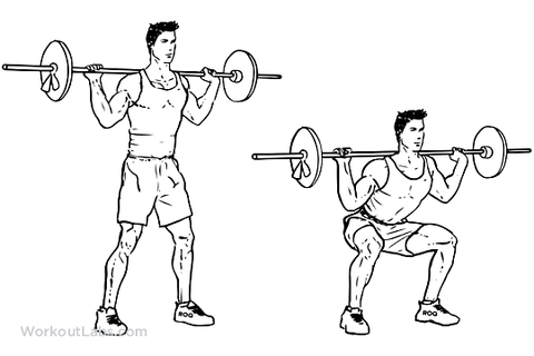 Push pull legs for building muscle