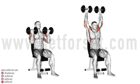 are arnold presses good for front deltoids