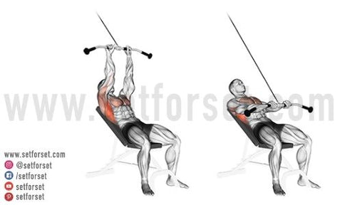 are cable exercises good for back