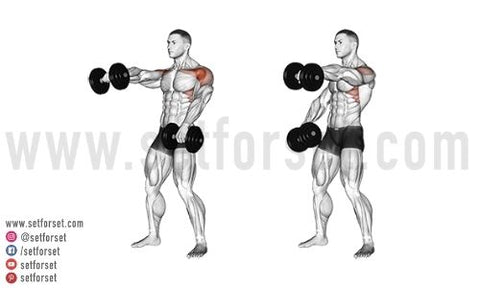 are front raises good for the front delts