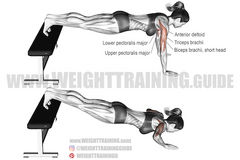 pushing exercises for home workouts