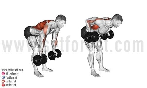 back and bicep workout bodybuilding