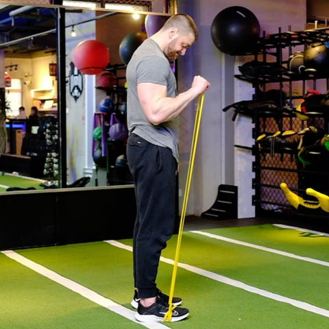 banded bicep exercises