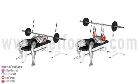 bench press front delts